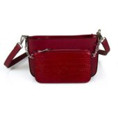 66C070 RED (1)